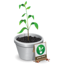 Become a Seed Planter with A Titus Man